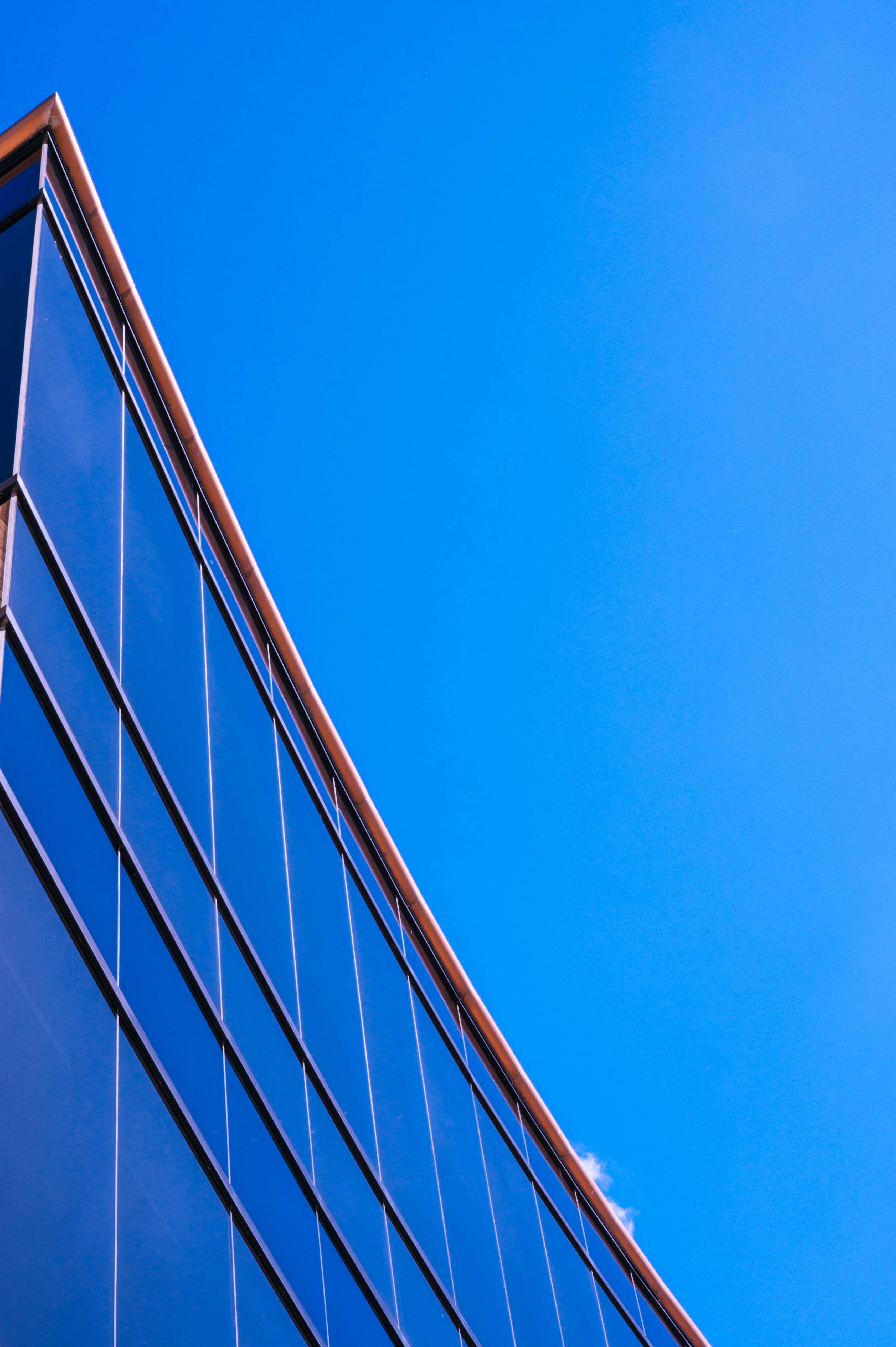 Architectural Photography Of Curtain Glass Building