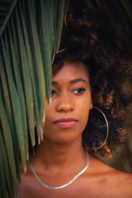 アダルト, アフリカ系アメリカ人, アフロ, イヤリングの無料の写真素材