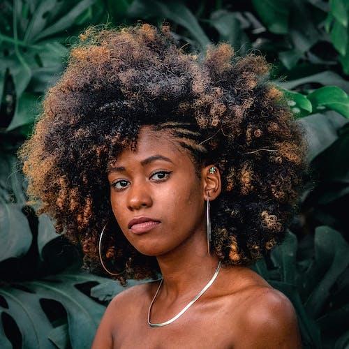 Immagine gratuita di acconciatura, afro, alla ricerca, capelli