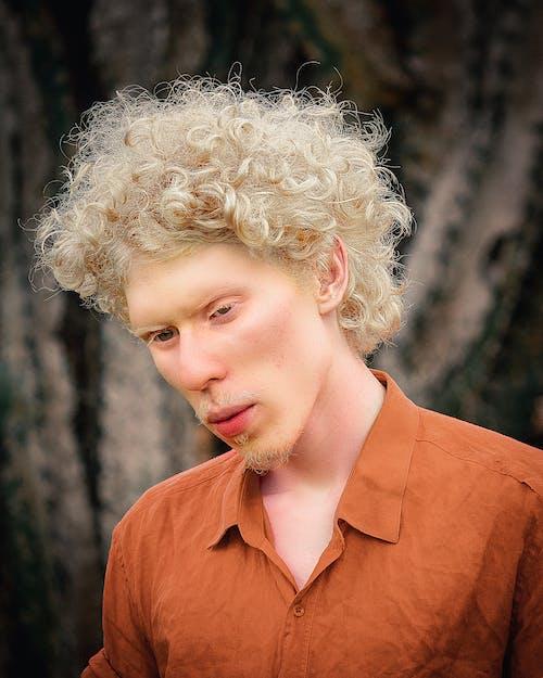 Fotos de stock gratuitas de adulto, albino, cabello, expresión facial
