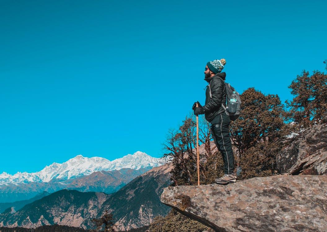 albastru, alpinist, arbori