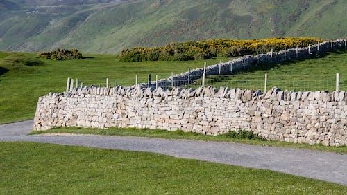 Ảnh lưu trữ miễn phí về cỏ, con đường, đá, đường mòn