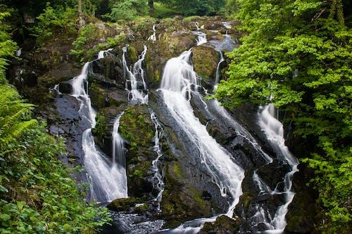 경치, 녹색, 물, 바위의 무료 스톡 사진