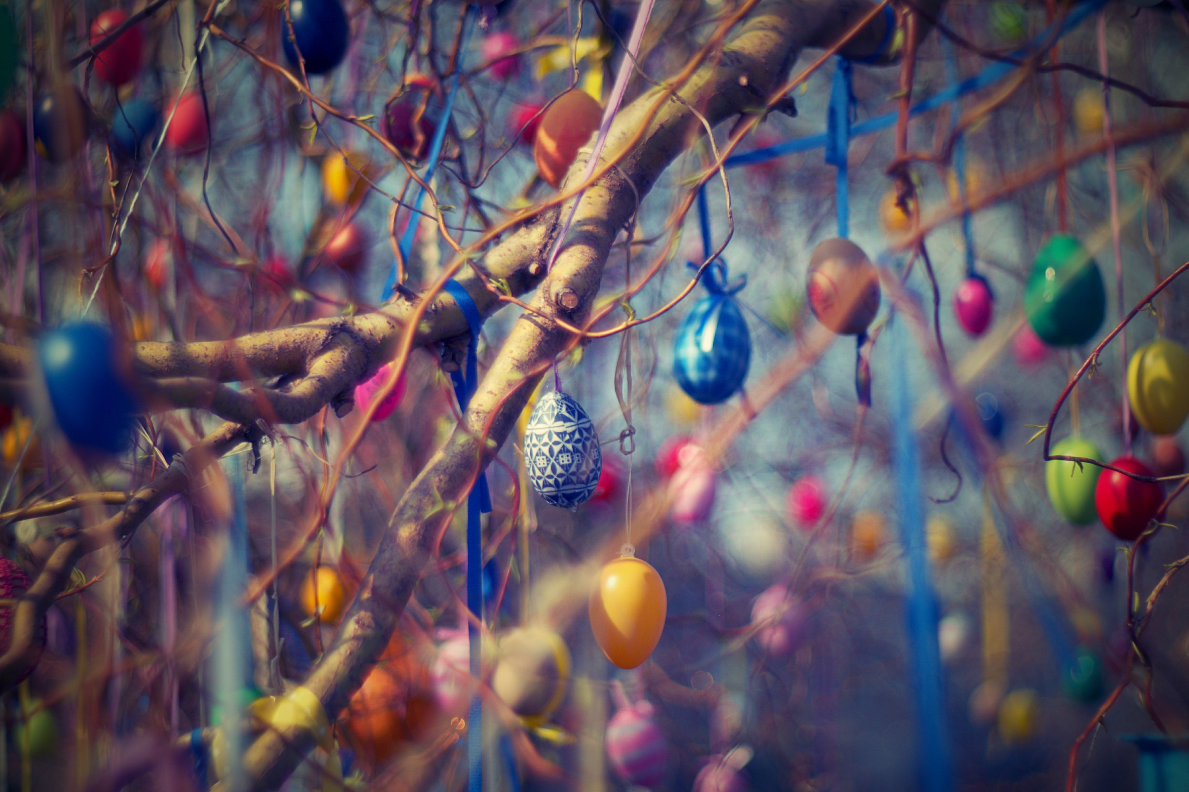 Assorted-color Hanging Decors on Tree