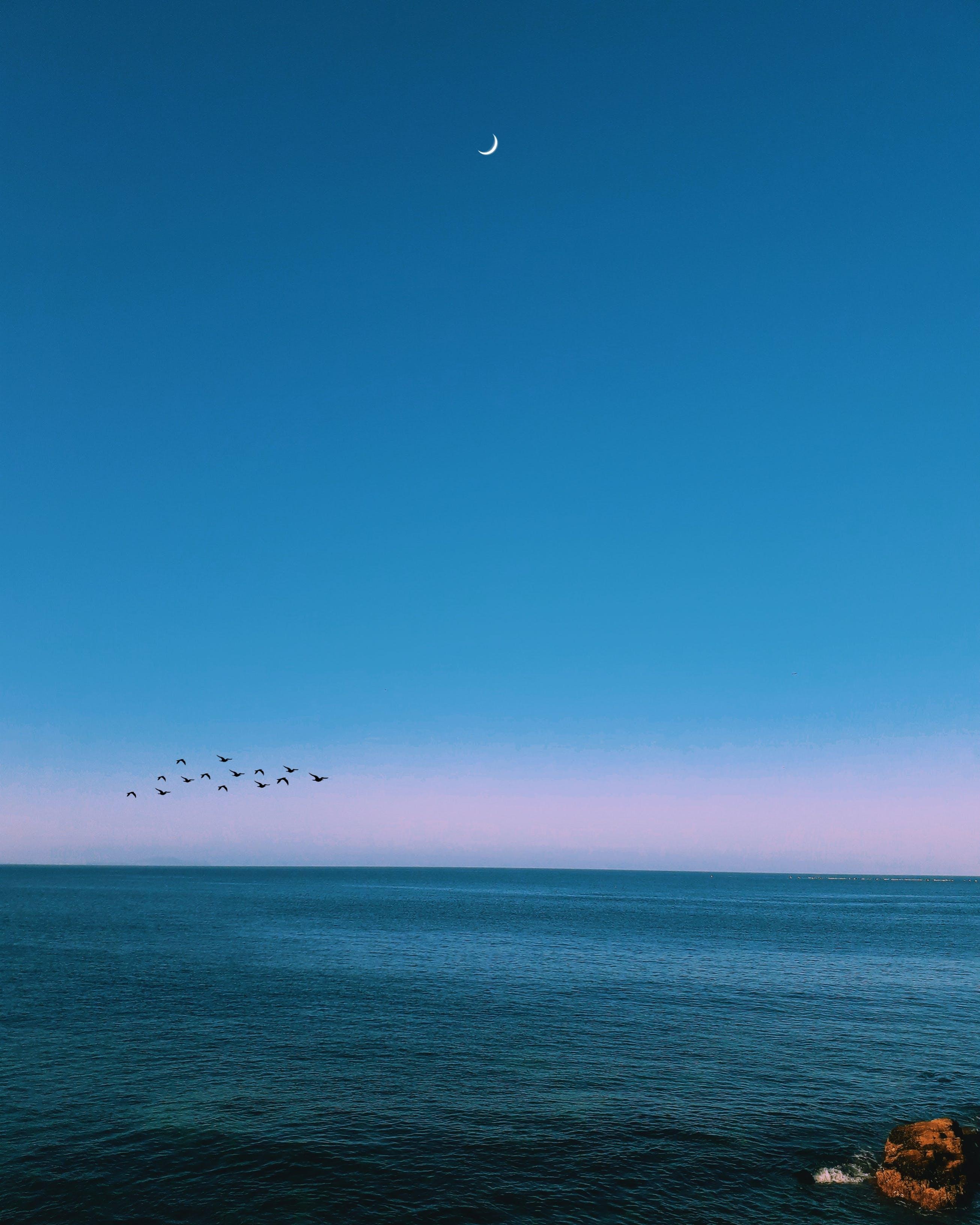 açık hava, akşam, akşam karanlığı, ay içeren Ücretsiz stok fotoğraf