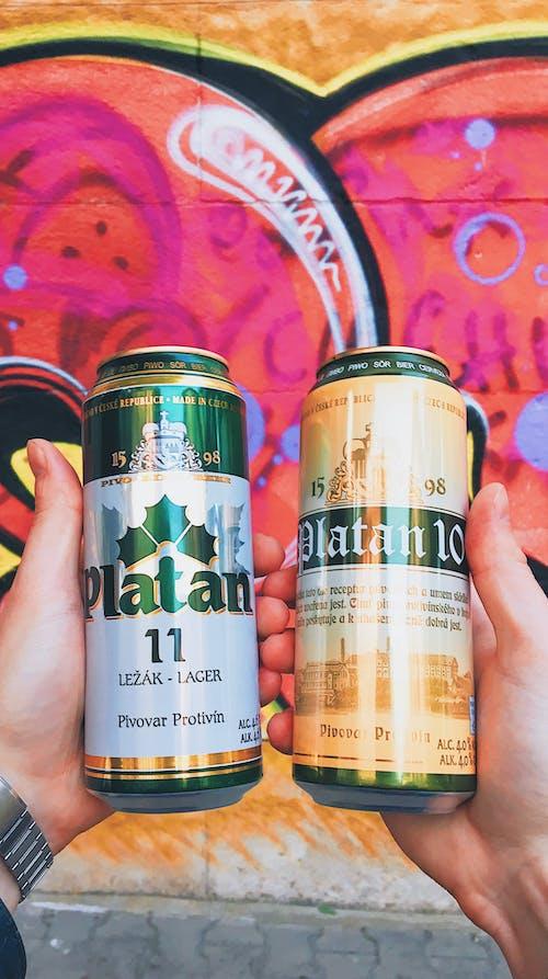 Foto profissional grátis de cerveja, cerveja artesanal, cerveja platan, checo