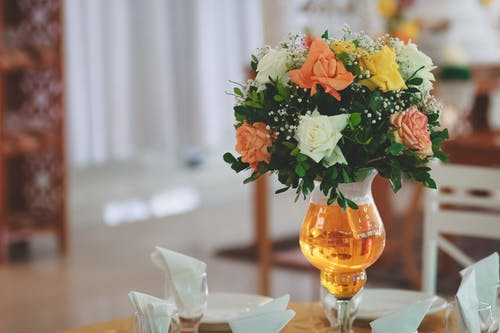 Orange and White Petaled Flowers on Vase