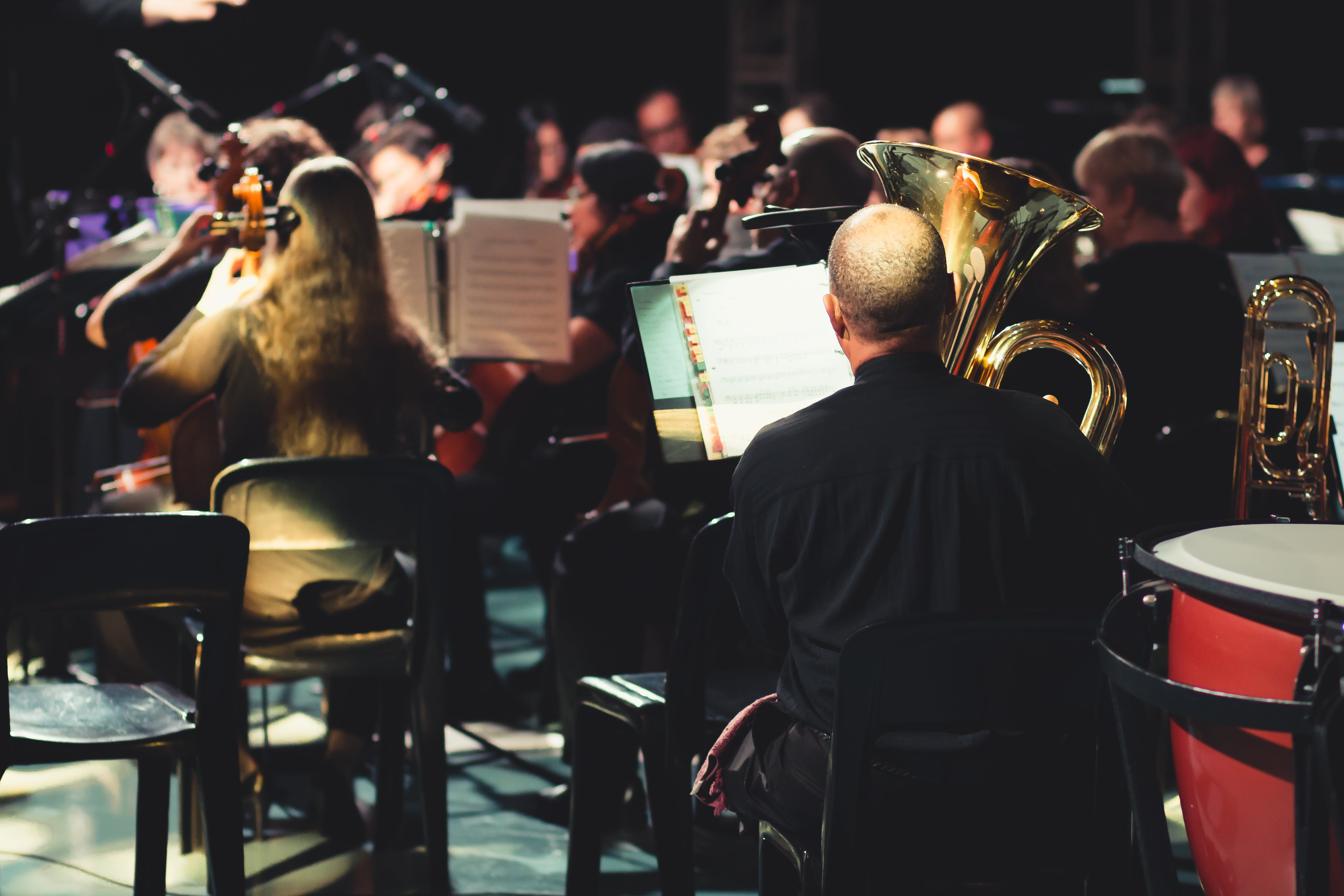 Free stock photo of conductor, musical, musical instrument, orchestra