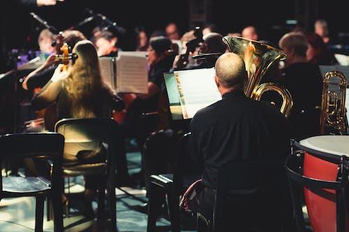 Ingyenes stockfotó hangszer, karmester, zenei témában