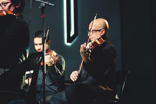 Ingyenes stockfotó hangszer, hegedű, karmester, zenei témában