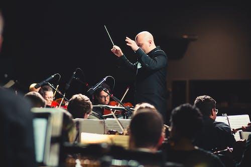 Kostnadsfri bild av dirigent, musikalisk, musikinstrument, orkester