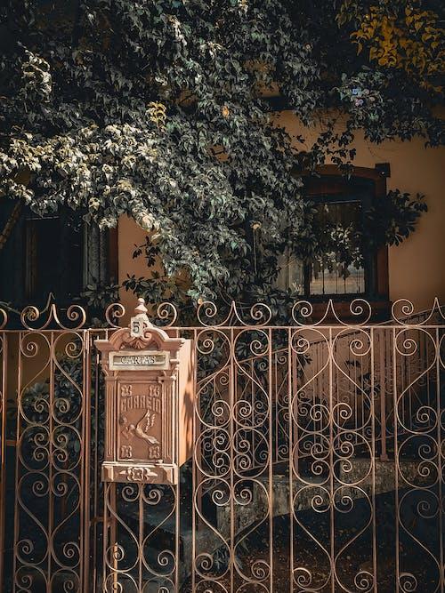 Kostenloses Stock Foto zu antik, architektur, außen, baum