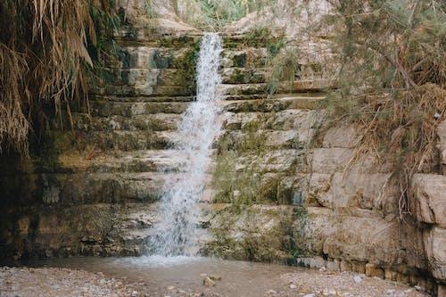 Gratis stockfoto met Bemoste rotsen, berg, boom, buiten