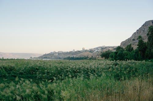 Gratis stockfoto met galilea, h2o, Israël, midden-oosten