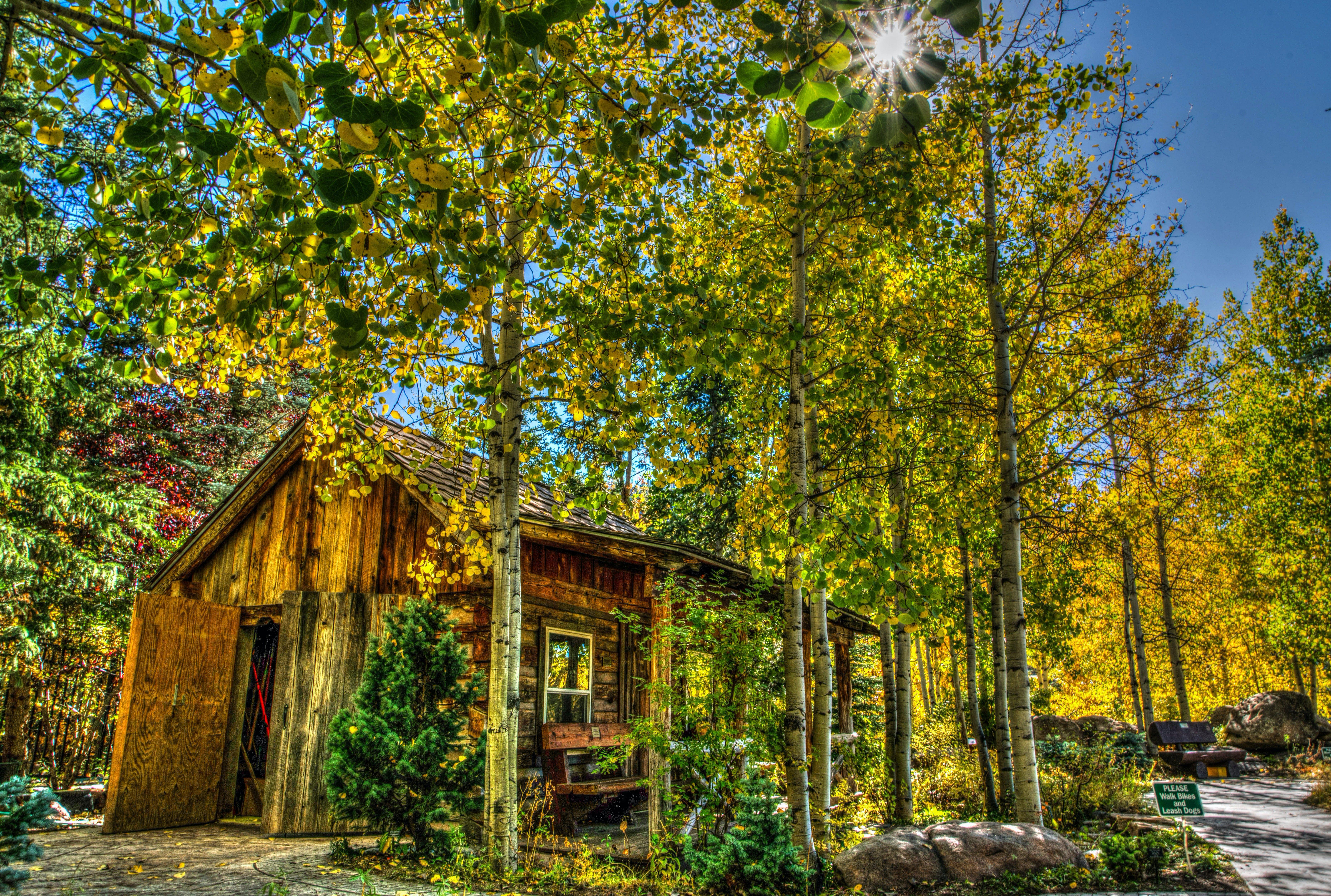 Gratis stockfoto met architectuur, blauwe lucht, bomen, Bos
