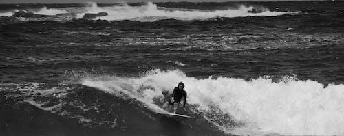 オーストラリア, サーファー, サーフィン, シドニーの無料の写真素材