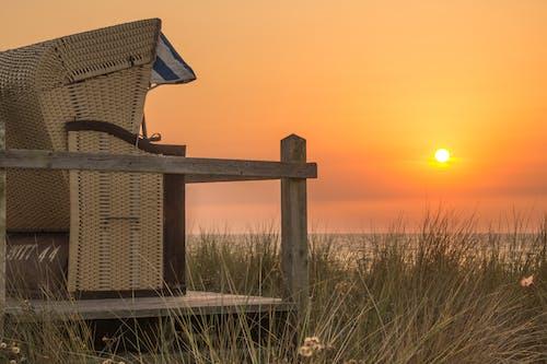 Základová fotografie zdarma na téma dok, dřevo, krajina, lehký