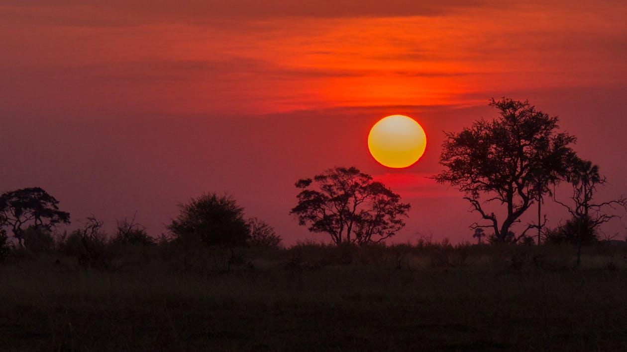 オカバンゴデルタ, ボツワナ, 日没の無料の写真素材