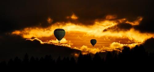 Foto d'estoc gratuïta de alba, arbres, aventura, capvespre