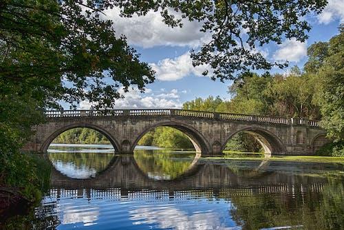 Photos gratuites de arbre, architecture, calme, eau