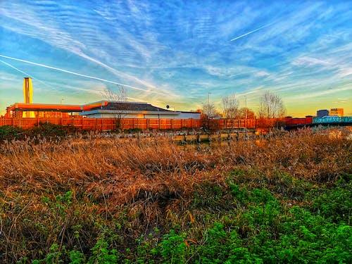 天空, 工業, 棕色, 綠色 的 免費圖庫相片