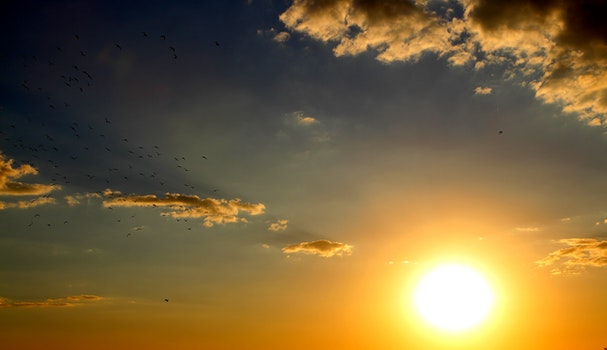 Free stock photo of light, dawn, sky, sunset