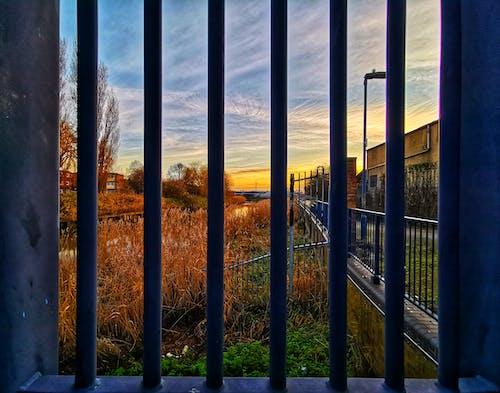 外框, 天空, 棕色, 植物 的 免費圖庫相片