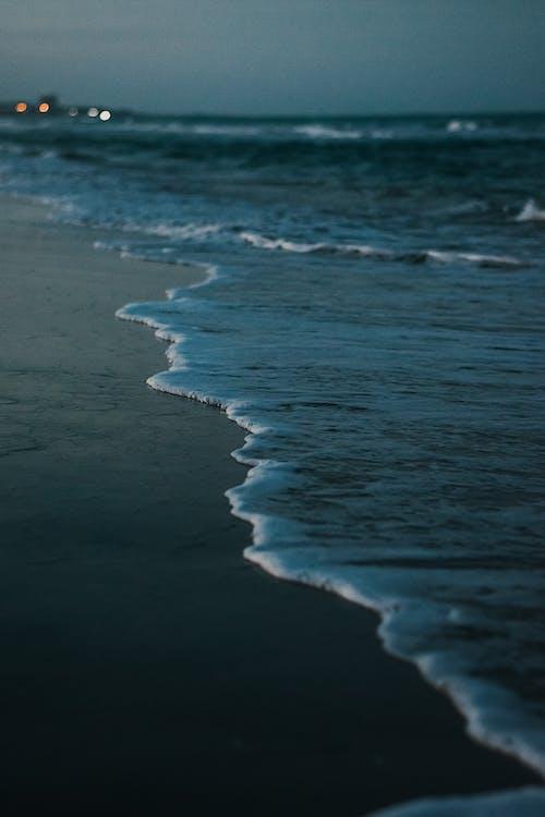 天性, 岸邊, 招手, 海 的 免費圖庫相片