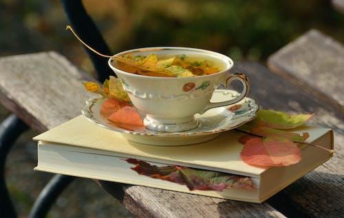 술을 마시다, 차, 찻잔, 컵의 무료 스톡 사진