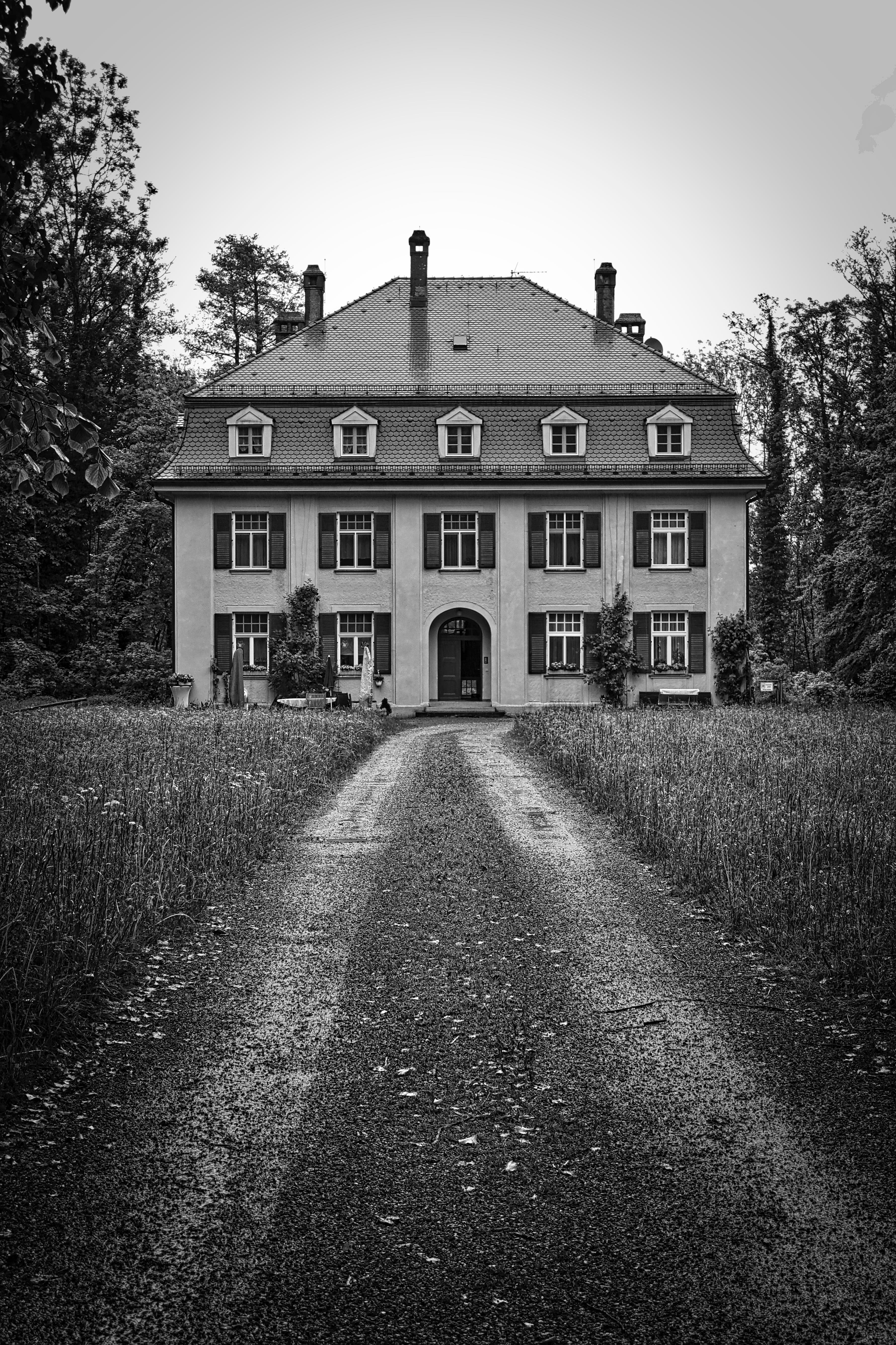 3-story House Surrounded by Trees Grayscale Photography