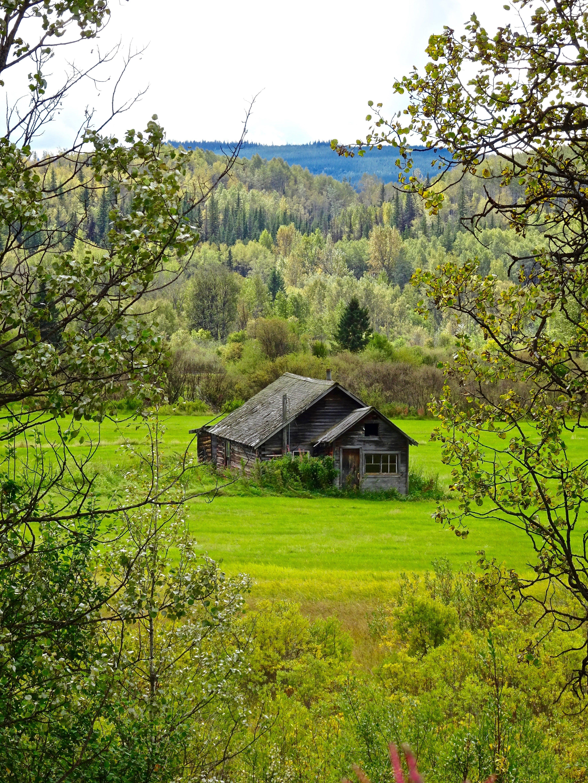 Free stock photo of building, house, barn, ruin