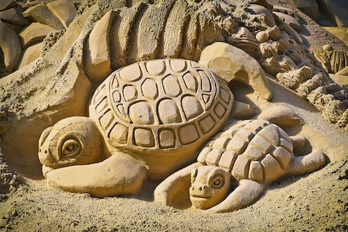 Turtle Sand Art Making