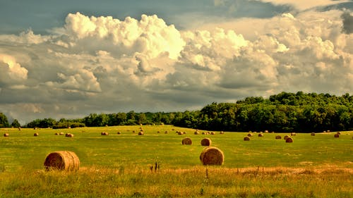 Free stock photo of clouds, countryside, crops
