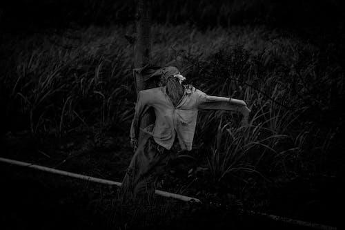 คลังภาพถ่ายฟรี ของ การทำฟาร์ม, ขาวดำ