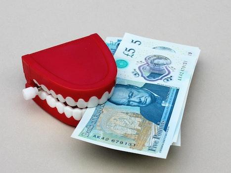Free stock photo of shopping, money, toy, finance