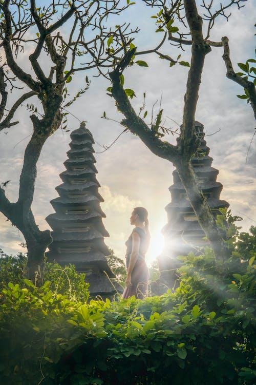 Foto profissional grátis de bali, balinês, taman ayun temple, templo