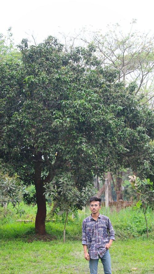Photos gratuites de boucles, grands yeux, jeune homme asiatique, le bangladesh