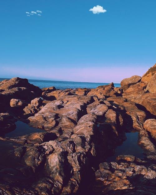 カラー画像, ビーチ, ブロガー, ムードの無料の写真素材