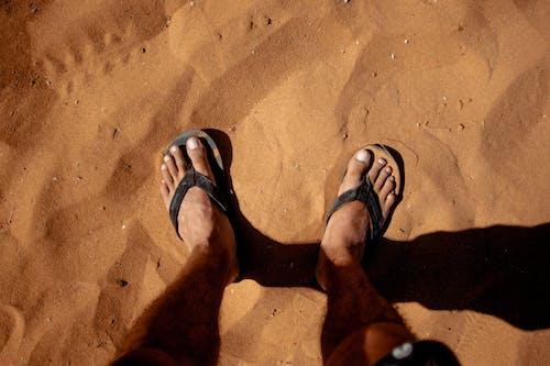 Gratis lagerfoto af Ben, beskidt, dagslys, fødder