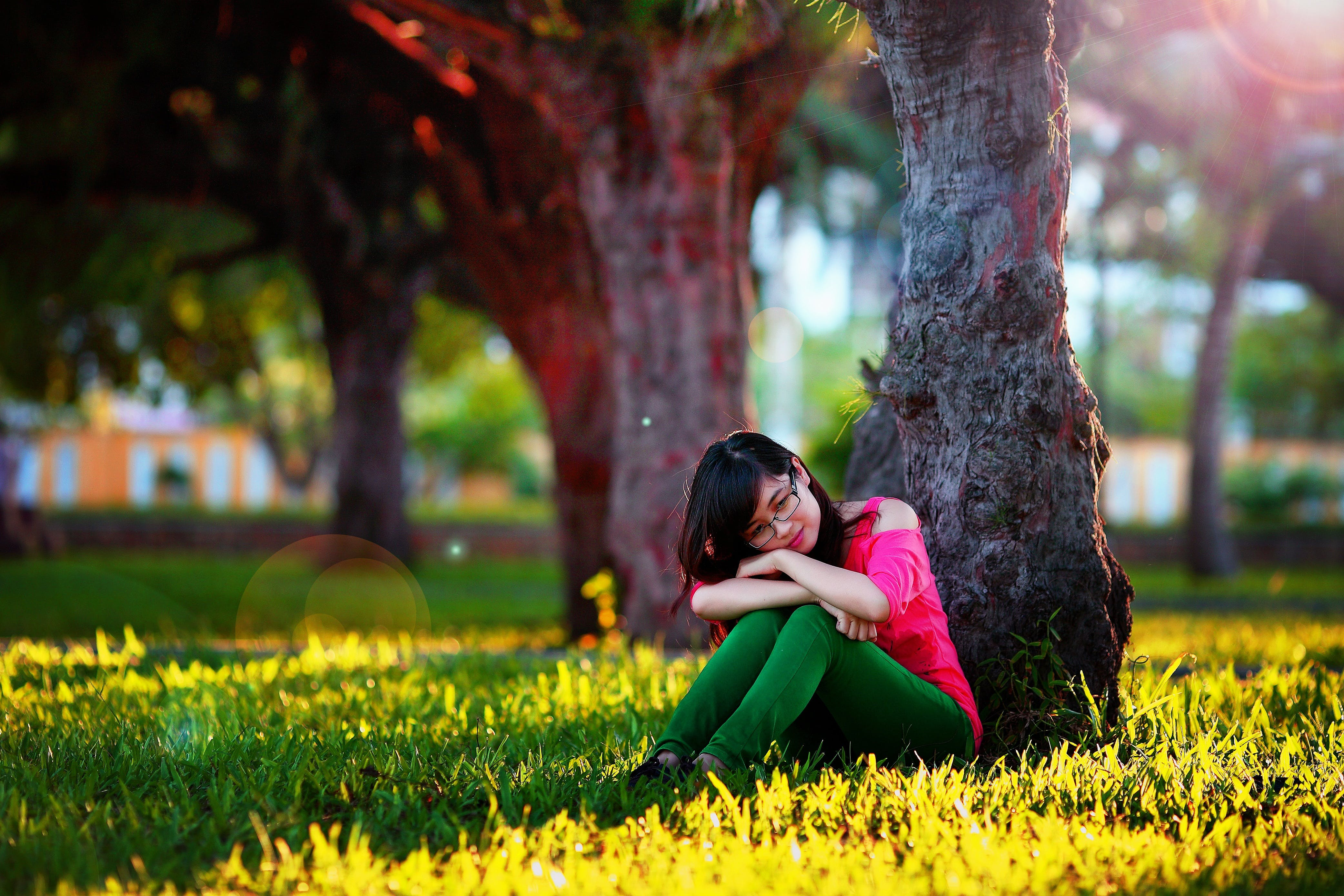 Woman Sitting Beside Tree on Field