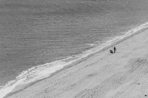 모노톤의, 물, 바다, 손을 흔들다의 무료 스톡 사진