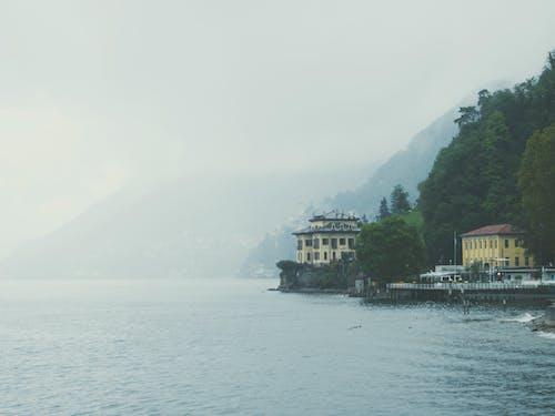 Fotos de stock gratuitas de bosque, como, Italia, niebla