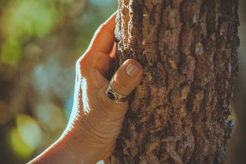 Безкоштовне стокове фото на тему «великий план, кільце, персона, Рука»