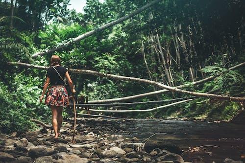 Kostnadsfri bild av dagsljus, djungel, ensam, flicka