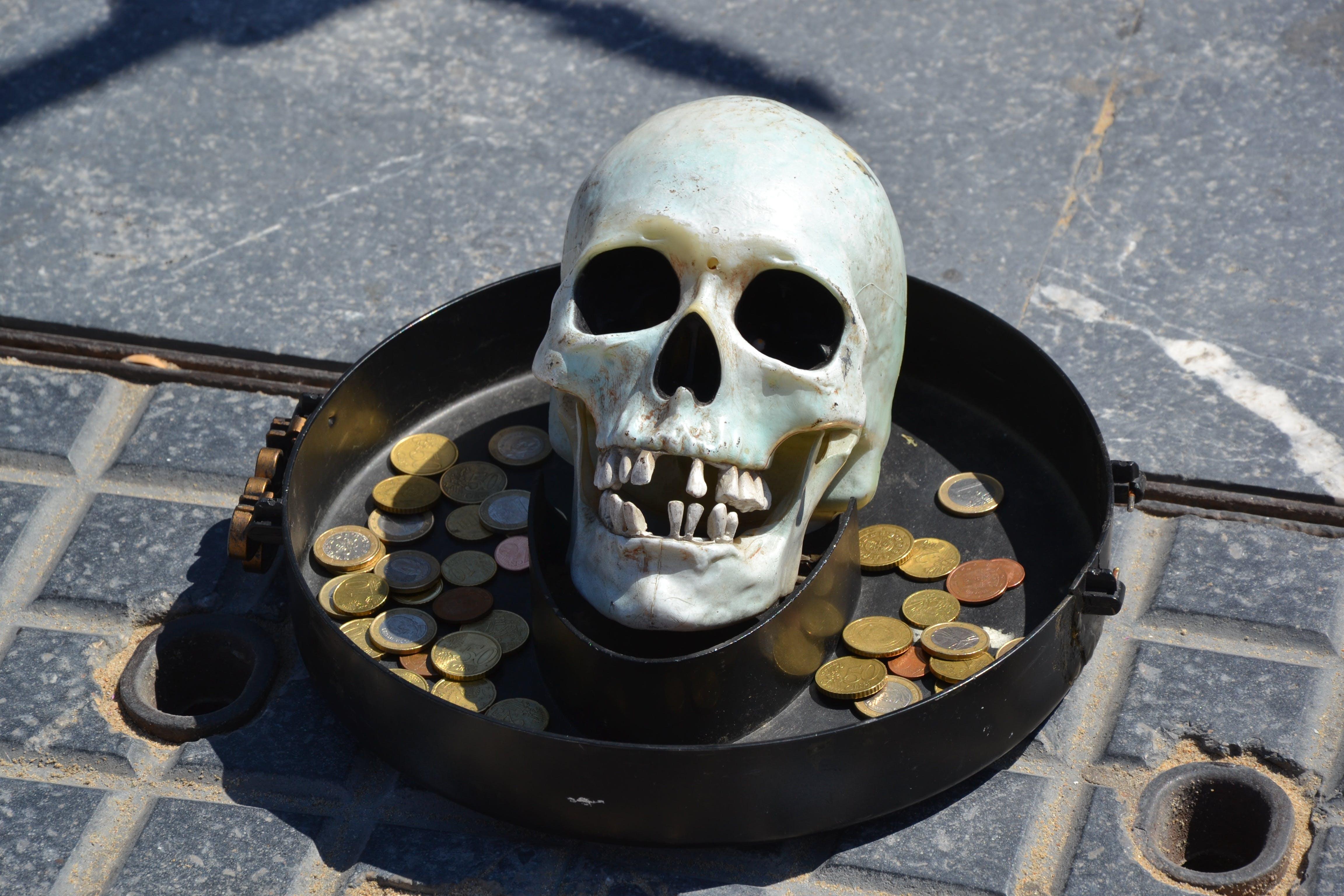 Free stock photo of crane, death, death's head, head