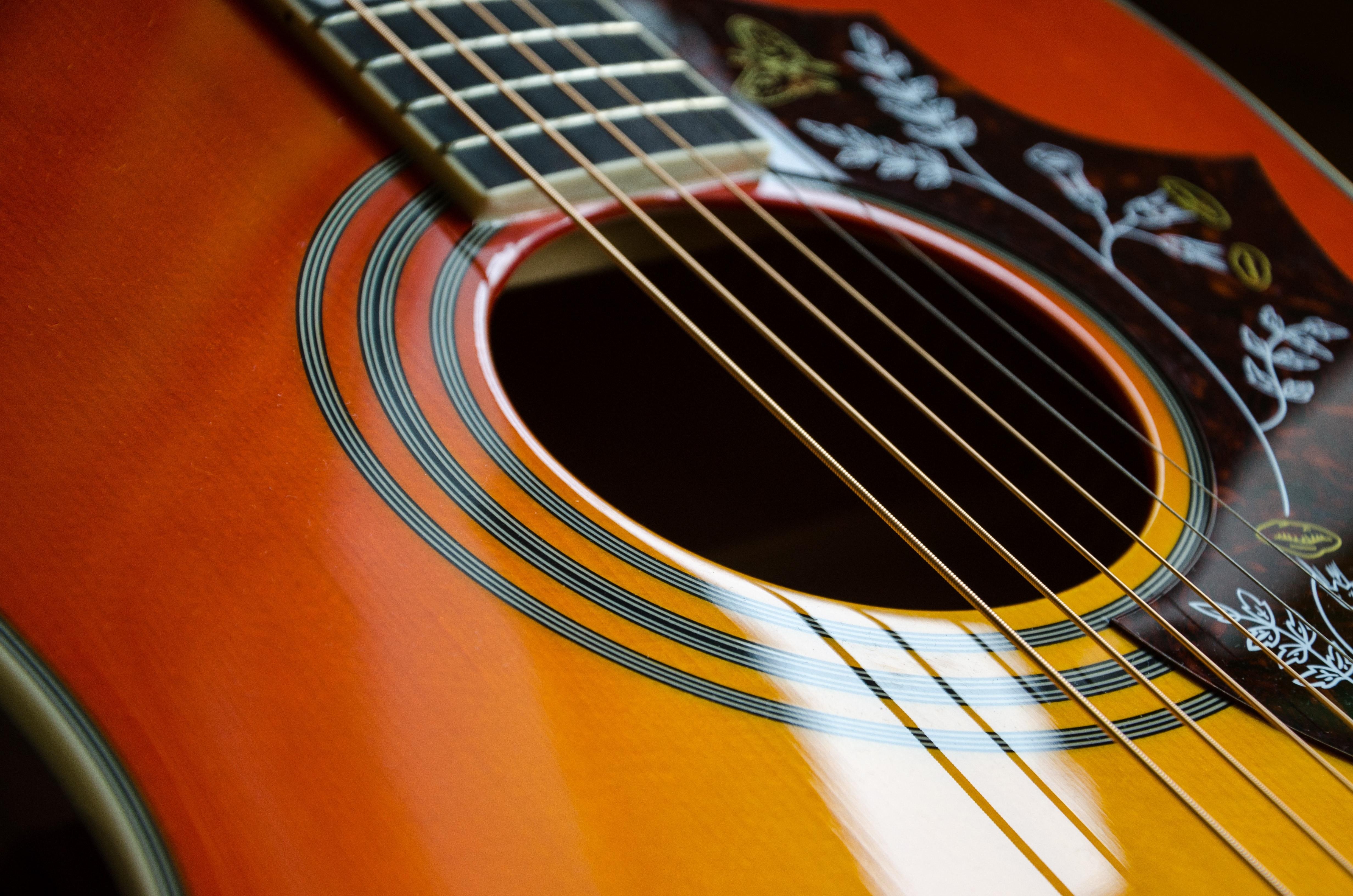 Brown And Black Leaf Print Guitar Free Stock Photo