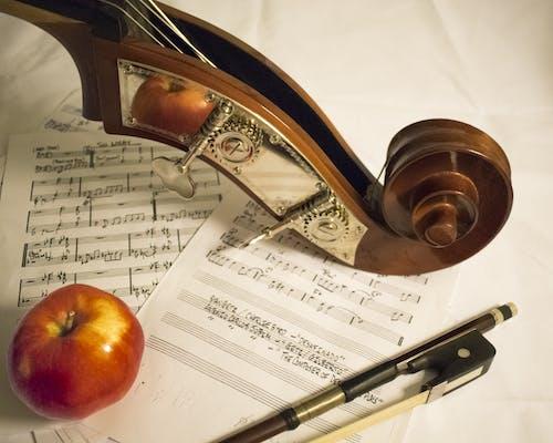 Fotobanka sbezplatnými fotkami na tému Apple, hudobný nástroj, jablko, kompozícia