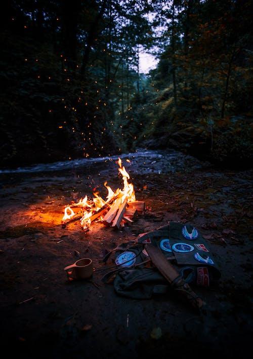 Fotobanka sbezplatnými fotkami na tému atraktívny, batoh, detailný záber, drevo na oheň