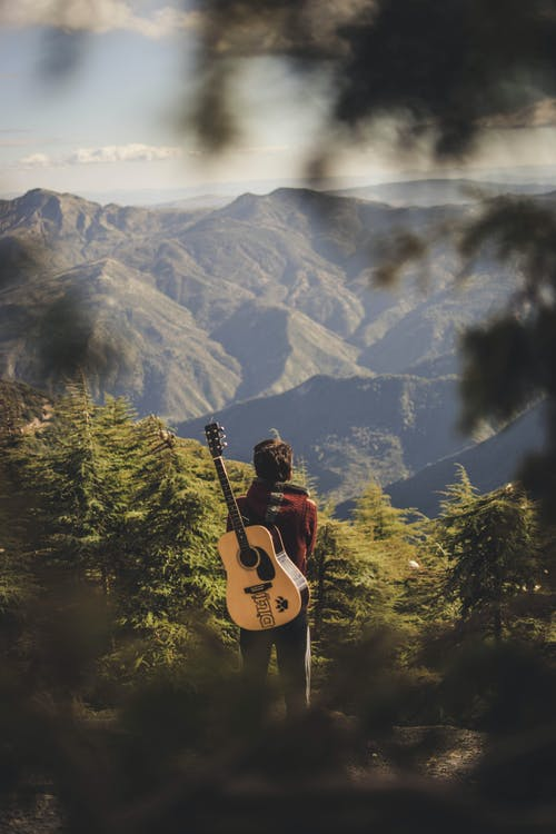 ao ar livre, árvores, aventura