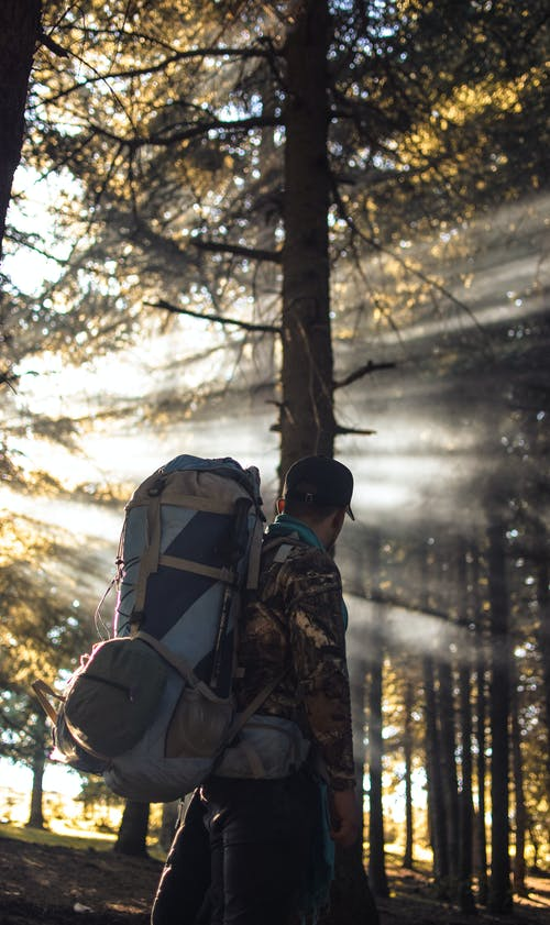 Man With Hiking Backpack in Forest